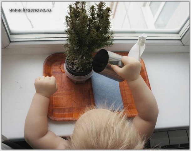 упражнения уход за растениями