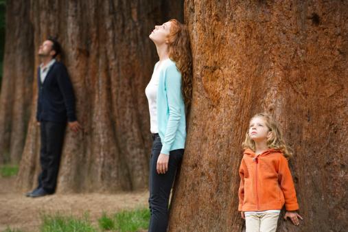 Избалованные дети или испорченные родители?