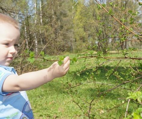 знакомим ребенка с окружающим миром до года