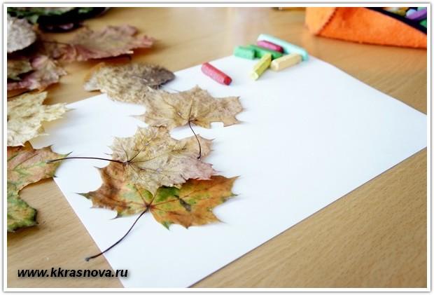 Палитра из листьев