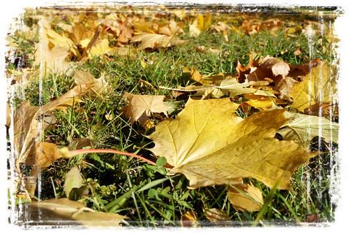 Осенний сенсорный уголок