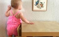 Методика Марии Монтессори – все, что нужно знать современным родителям.